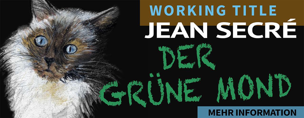Werbebanner für den Kriminalroman Katzenjammer aus der Reihe Paul Boreau