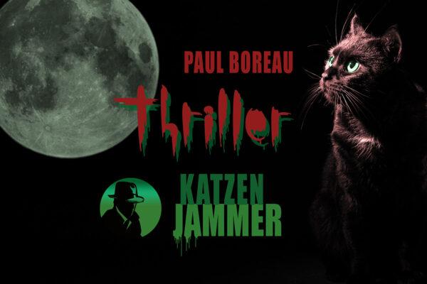 Paul Boreau in seinem ersten Fall. Katzenjammer: Der neue Provence-Thriller von Jean Secré